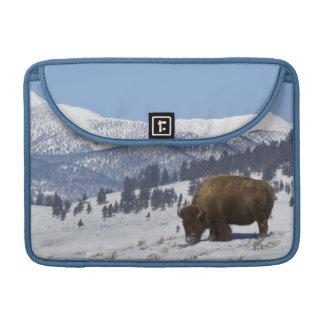 米国、WY、イエローストーンNPのアメリカ野牛のバイソン MacBook PROスリーブ