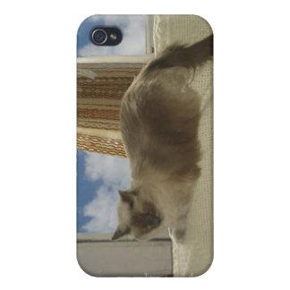 粉飾 iPhone 4 ケース