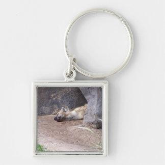 粘土の地上の写真にあっている睡眠のハイエナの頭部 キーホルダー