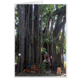 精神の家及びBodhiの木 カード
