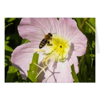 約蜂花の土地に カード