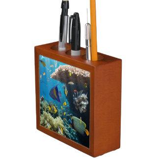紅海、エジプトの珊瑚そして魚 ペンスタンド