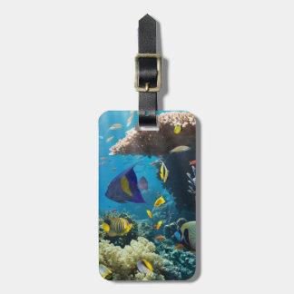 紅海、エジプトの珊瑚そして魚 ラゲッジタグ