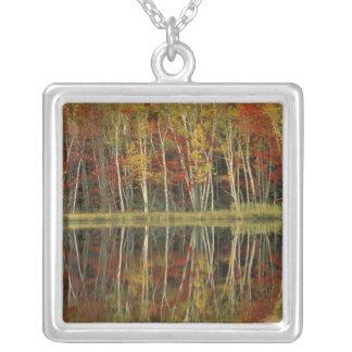 紅葉および樺の木の反射; Hiawatha シルバープレートネックレス