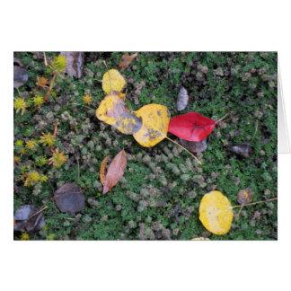 紅葉の悔やみや弔慰カード ノートカード