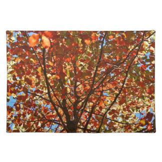 紅葉の花火 ランチョンマット