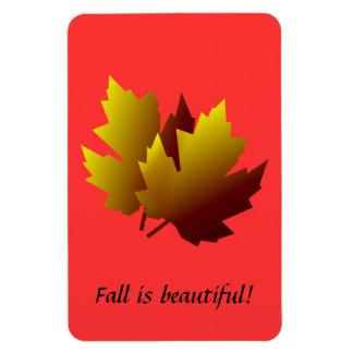 紅葉の適用範囲が広い磁石 マグネット