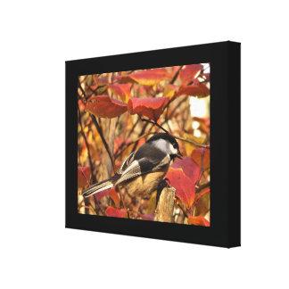 紅葉を持つ白黒の《鳥》アメリカゴガラの鳥 キャンバスプリント