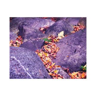 紅葉及び石カナダ キャンバスプリント