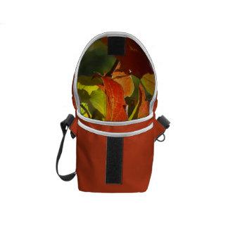 紅葉 メッセンジャーバッグ