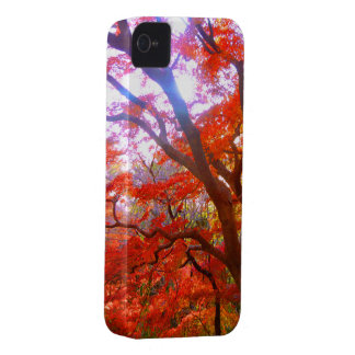 紅葉 iPhone 4 Case-Mate ケース