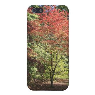 紅葉 iPhone 5 カバー