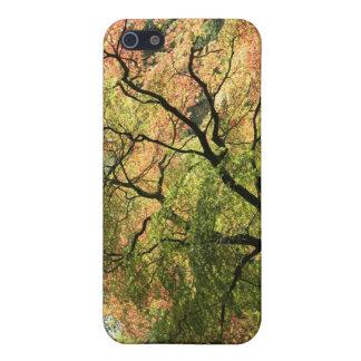 紅葉 iPhone 5 COVER