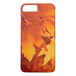 紅葉 iPhone 8 PLUS/7 PLUSケース