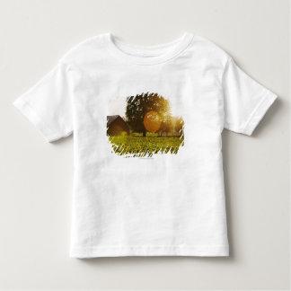 納屋との日没のヒマワリ分野 トドラーTシャツ