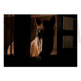 納屋の停止でシルエットを描かれる馬 カード