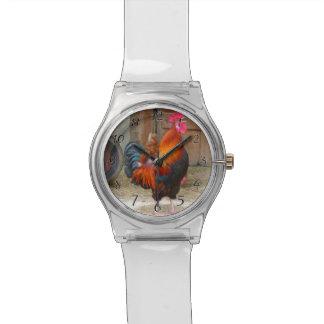 納屋周囲の庭で鳴いているロードアイランド赤のオンドリ 腕時計