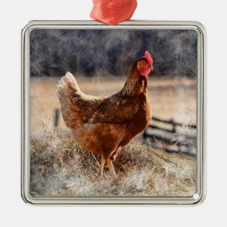 納屋周囲の庭の雌鶏の曇らされたエッジングを持つオーナメント メタルオーナメント