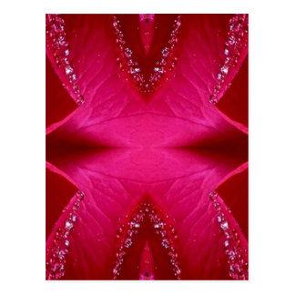 純粋なバラの花びらの芸術- Blood Red n PinkRose 葉書き