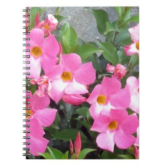 純粋なピンクのスマイルによっては愛ロマンスの官能的なギフトが開花します ノートブック