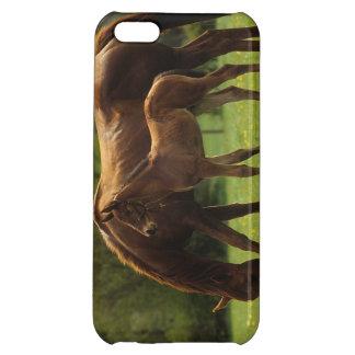 純血種のロバ及び子馬2 iPhone5C