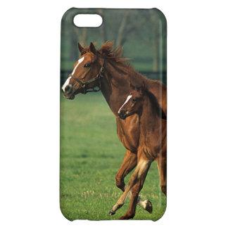 純血種のロバ及び子馬3 iPhone 5C カバー