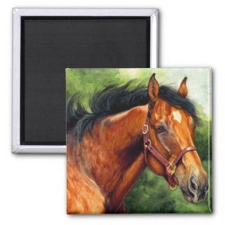 純血種の馬 マグネット