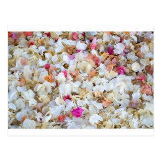 紙吹雪によって乾燥される花 ポストカード