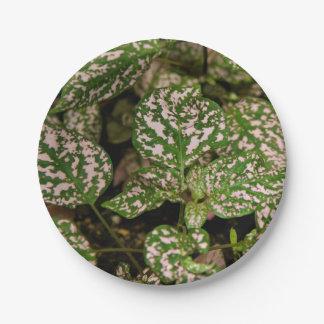紙皿-ピンクの水玉模様の植物 ペーパープレート