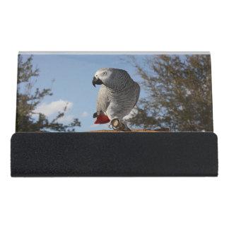 素晴らしいアフリカ灰色のオウム デスク名刺ホルダー