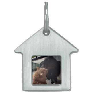 素晴らしいギフト-あなたの猫のための家のラベルかキーホルダー ペットネームタグ