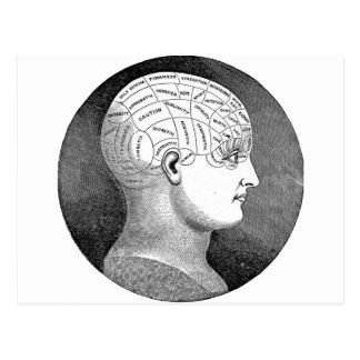 素晴らしいヴィンテージの芸術の骨相学の頭部の図表 ポストカード