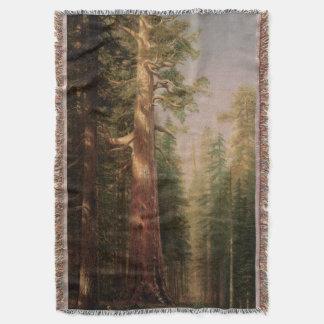 素晴らしい木、Mariposa果樹園、Bierstadt著カリフォルニア 毛布