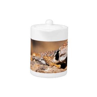素晴らしい洗面器によって襟首をつかまれるトカゲ-ぎざぎざの道-ユタ