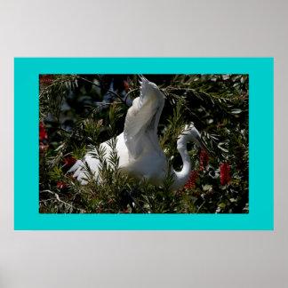 素晴らしい白鷺のプリント ポスター