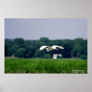素晴らしい白鷺飛行中に-ポスター ポスター