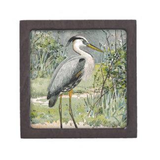 素晴らしい青鷲のイラストレーション ギフトボックス
