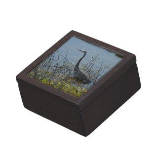 素晴らしい青鷲のVieraの沼地の優れたギフト用の箱 ギフトボックス