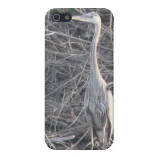 素晴らしい青鷲4/4s iPhone 5 cover