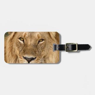 素晴らしい鬣を搭載するライオン ラゲッジタグ
