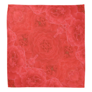 素晴らしく豊富で赤いバラは融合花束の開きます バンダナ