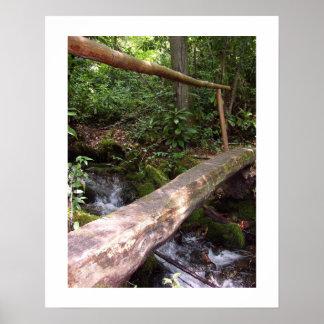 素朴な丸木橋 ポスター