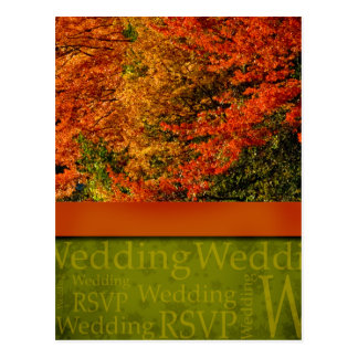 素朴な秋の結婚式の郵便はがき ポストカード
