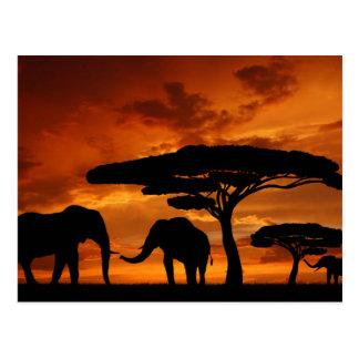 素朴な自然の景色のヴィンテージの野生動物 ポストカード