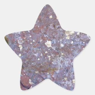 素朴な花こう岩の乾燥された地衣のコケパターン 星シール