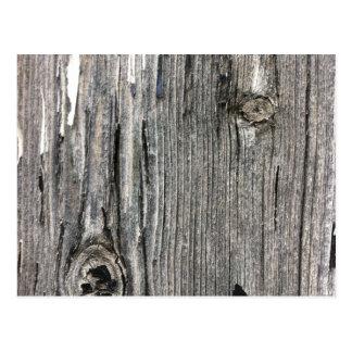 素朴な薮の設定からの老化させた木製の塀の投稿 ポストカード