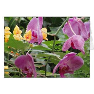 紫色およびオレンジ熱帯花 カード