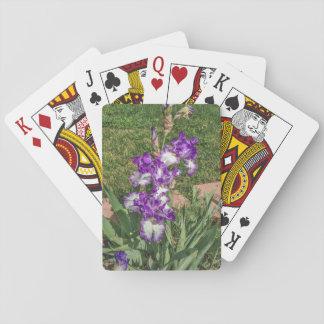 紫色および白いアイリス-母の日は、よく得ます トランプ