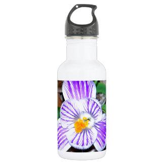 紫色および白くストライプのなクロッカス ウォーターボトル