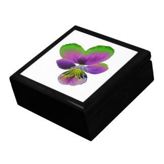 紫色および緑のパンジーのギフト用の箱 ギフトボックス